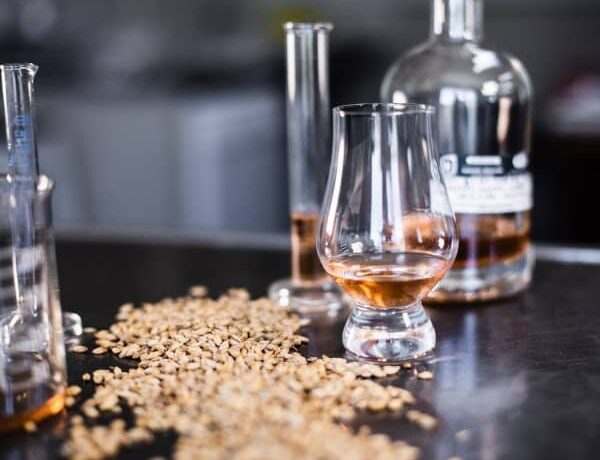 Have an amazing whisky tasting at home!